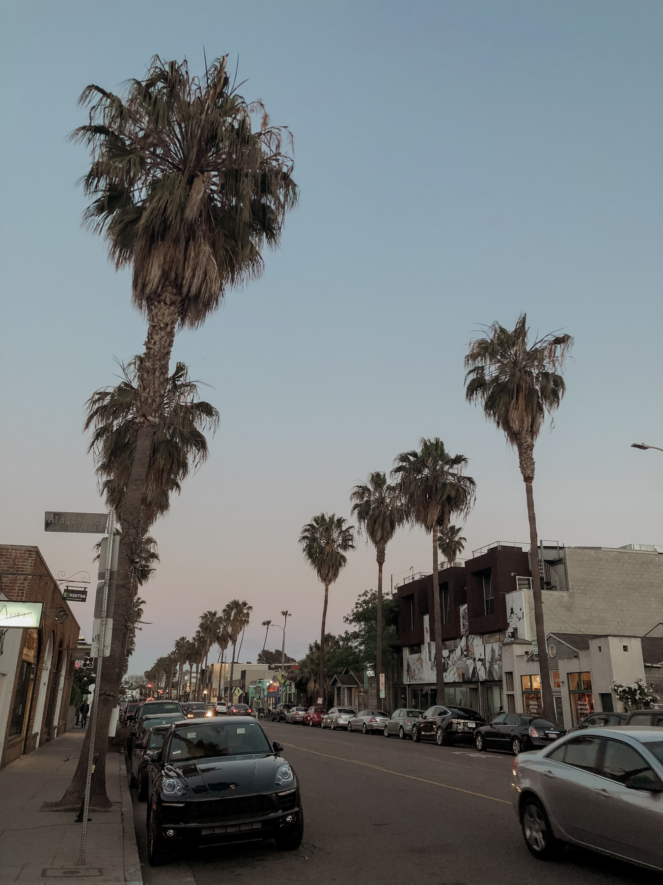 abbot kinney venice beach los angeles